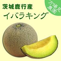【方波見農園】イバラキング メロン 1箱 約5kg(4~5玉入) ~ 茨城鹿行(鉾田)産