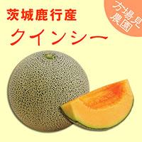 【方波見農園】クインシー メロン 1箱 約5kg(4~5玉入) ~ 茨城鹿行(鉾田)産