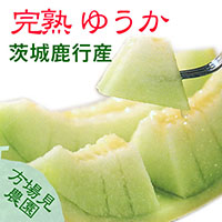 【方波見農園】完熟ゆうか メロン 1箱 約5kg(5~6玉入) ~ 茨城鹿行(鉾田)産